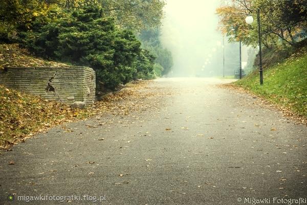http://s16.flog.pl/media/foto_middle/10476348_daj-reke.jpg