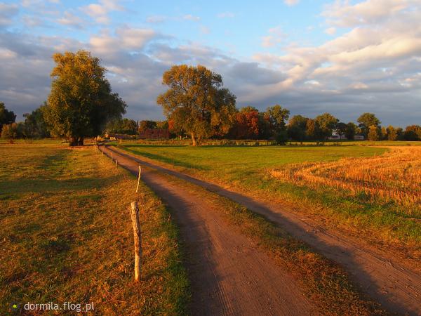 http://s16.flog.pl/media/foto_middle/10487011_jesienny-pejzaz.jpg